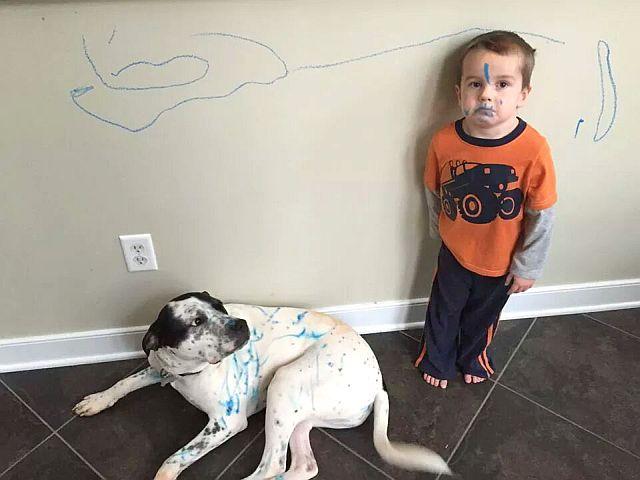 Ребенок разрисовал себя, собаку и обои - чем отмыть чернила